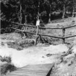 Ausgebauter Weg durch Holzbarriere gesichert.