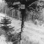 Ehemalige Grenze zur DDR (schwarz/weiß)